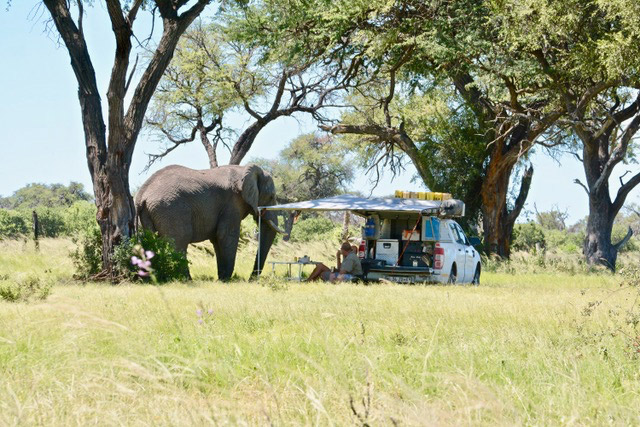 Namibia - camping with elephants